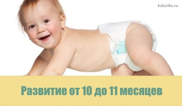 Развитие от 10 до 11 месяцев