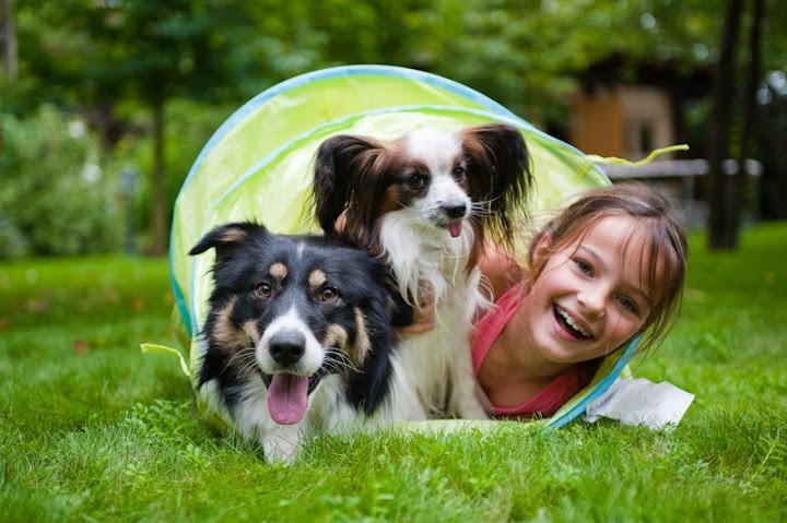 Какое животное лучше завести ребенку