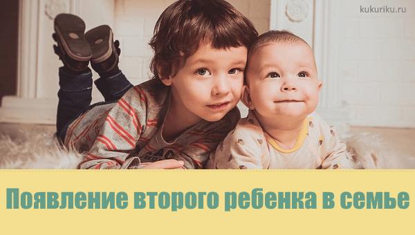 Появление второго ребенка в семье: как выстроить отношения между детьми