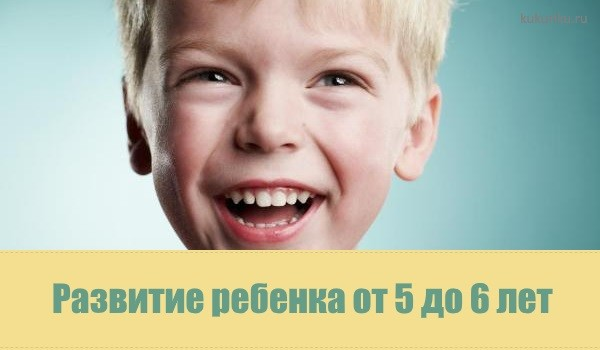 Развитие ребенка от 5 до 6 лет