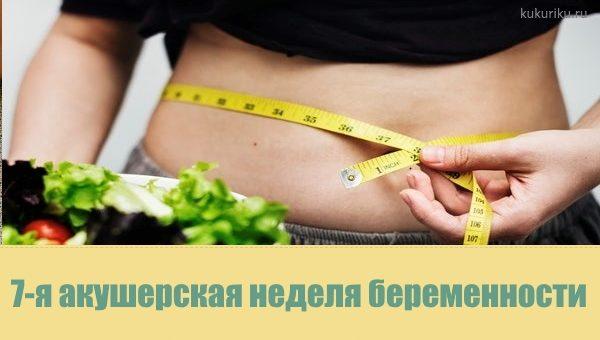 Календарь беременности. 7-я акушерская неделя