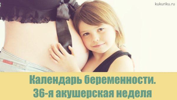 36 акушерская неделя беременности