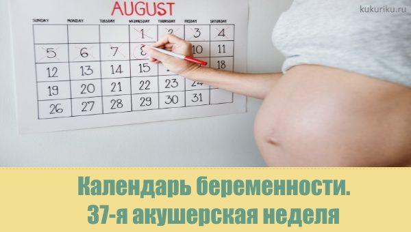 37 акушерская неделя беременности