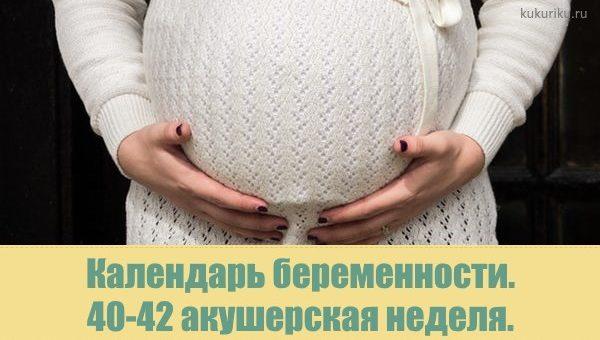 календарь беременности 40-42 акушерской недели