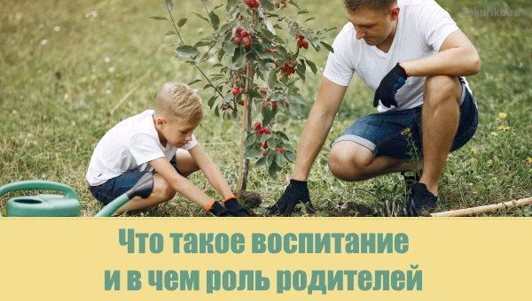Что такое воспитание и что формируем в ребенке